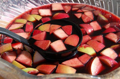 Sangria Fruit Bowl Royalty Free Stock Photography