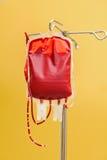 Sangue armazenado em uma clínica Imagem de Stock Royalty Free