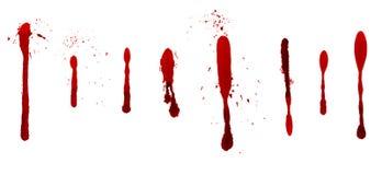 Sangue della sgocciolatura Immagine Stock Libera da Diritti