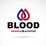 Sangue venoso arterioso e, vettore concettuale di circolazione sanguigna illustrazione vettoriale