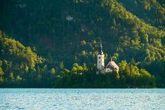 Sanguinato con il lago in Slovenia, Europa Immagine Stock