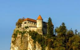 Sanguinato, la Slovenia Fotografia Stock