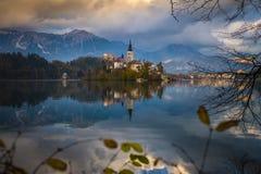 Sanguinato, la Slovenia - la bella alba di autunno nel lago ha sanguinato con la chiesa famosa di pellegrinaggio del presupposto  Fotografie Stock Libere da Diritti