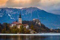 Sanguinato, la Slovenia - la bella alba di autunno nel lago ha sanguinato con la chiesa famosa di pellegrinaggio del presupposto  Immagini Stock Libere da Diritti