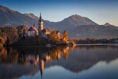 Sanguinato, la Slovenia - la bella alba di autunno nel lago ha sanguinato con la chiesa famosa di pellegrinaggio del presupposto  Fotografie Stock