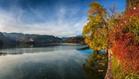 Sanguinato, la Slovenia - i bei colori di autunno dal lago hanno sanguinato Immagine Stock