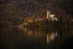 Sanguinato, la Slovenia - il bello autunno nel lago ha sanguinato con la chiesa famosa di pellegrinaggio del presupposto di Maria Fotografia Stock Libera da Diritti