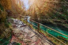 Sanguinato, la Slovenia - il bello canyon della gola di Vintgar con il percorso e la corrente di legno vicino ha sanguinato Fotografia Stock