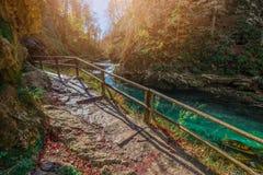 Sanguinato, la Slovenia - il bello canyon della gola di Vintgar con il percorso e la corrente di legno vicino ha sanguinato Immagine Stock Libera da Diritti