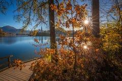 Sanguinato, la Slovenia - il pilastro accanto al lago ha sanguinato su una bella alba di autunno Immagine Stock