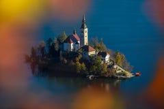 Sanguinato, la Slovenia - la vista aerea dell'alba del lago ha sanguinato preso dal punto di vista di Ostrica all'autunno Fotografie Stock Libere da Diritti