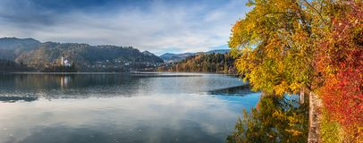 Sanguinato, la Slovenia - la vista panoramica di bei colori di autunno dal lago ha sanguinato con la chiesa di pellegrinaggio del Immagine Stock Libera da Diritti