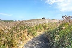 Sangumburi Crater, Jeju Island Stock Photo