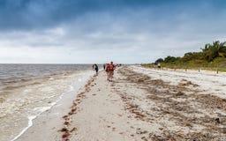 SANIBEL, FL - 2016年2月:Captiva与游人的海岛海滩 库存照片