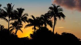 Sanibel-Insel-Sonnenaufgang Stockbild