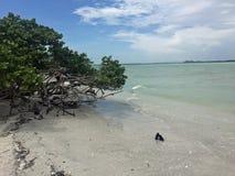 Sanibel Island Lighthouse Beach royalty free stock image