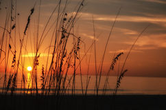 Sanibel solnedgång Arkivfoto