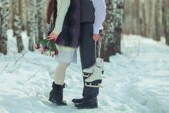 Sanie, biel, śnieg, sporty, konie, dwa, lov zabawa, outdoors, zimno, góra, tło, natura, drewno, kwiaty, kwiat, zabawa, zima Obrazy Royalty Free