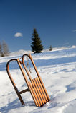 Sanie na śniegu fotografia royalty free