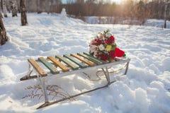 Sanie, sledding, biel, śnieg, sporty, sanie, zabawa, outdoors, zimno, góra, tło, natura, drewno, kwiaty, kwiat, zabawa, zima f Fotografia Stock