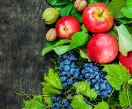 Sanità di legno scura del fondo del paese di frutti dell'assortimento delle bacche della mela dell'uva della noce organica del da Fotografia Stock Libera da Diritti