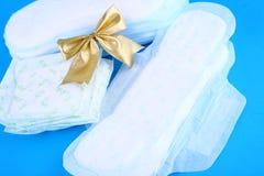 Sanitair Vrouwelijk Product - Royalty-vrije Stock Afbeelding