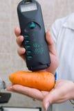 Sanitary control of foodstuffs Stock Image