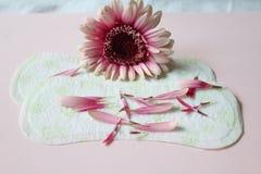 Sanitary pad. Some sanitary pad with flower Stock Photos