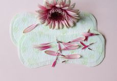 Sanitary pad. Some sanitary pad with flower Royalty Free Stock Photography