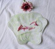 Sanitary pad Royalty Free Stock Image