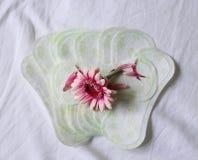 Sanitary pad Stock Photos