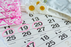 Sanitary pads , calendar , tampons , underwear with white daisies. On a light background calendar royalty free stock image