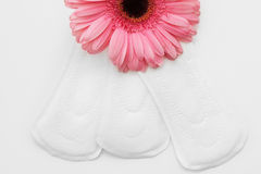 Sanitary daily pads, female healthcare and comfort Royalty Free Stock Image