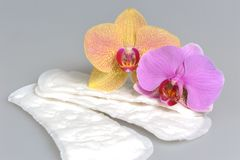 Sanitary towels with orchid flowers on gray Royalty Free Stock Image