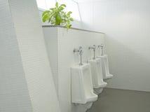 Sanitary ware Royalty Free Stock Image