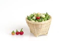 Sanitwongsei Craib do Solanum (trilobatum L do Solanum ) Fotos de Stock