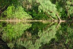 sank flod Royaltyfri Fotografi