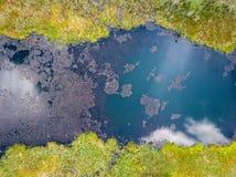 Sanka kuster av vårsjön arkivfoto