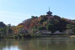 秋天叶子在Sankeien庭院里,横滨,神奈川,日本 免版税库存照片