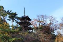 秋天叶子在Sankeien庭院里,横滨,神奈川,日本 图库摄影