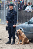 Police dogs at work Royalty Free Stock Photo