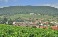 Sankt Martin,german Wine Route,Germany Stock Photography