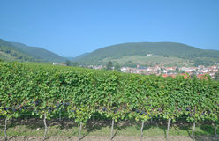 Sankt Martin,german Wine Route,Palatinate Stock Images