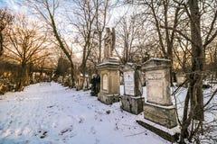 Sankt Marx Cemetery i Wien Arkivbild