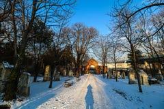 Sankt Marx Cemetery i Wien Royaltyfri Foto
