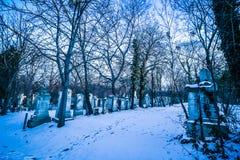 Sankt Marx Cemetery i Wien Royaltyfria Bilder