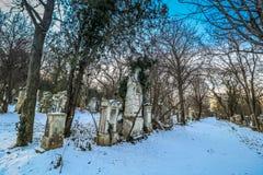 Sankt Marx Cemetery i Wien Royaltyfri Fotografi