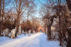 Sankt Marx Cemetery i Wien Arkivbilder