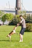 Sankt-Petereburg, Russia - 15 maggio 2016: l'uomo gioca in parco con un cane Fotografie Stock Libere da Diritti