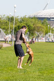 Sankt-Petereburg, Russie - 15 mai 2016 : l'homme joue en parc avec un chien Photographie stock libre de droits